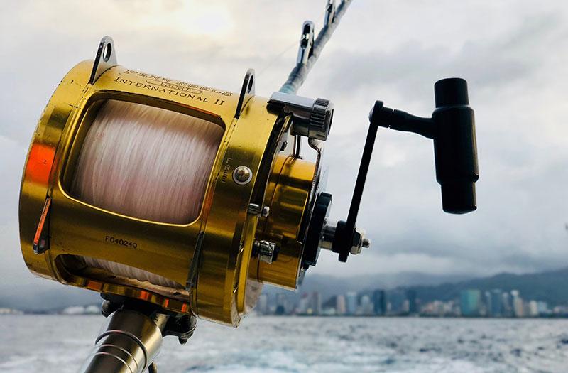 Equipamentos Básicos para Pesca Amadora de Sucesso