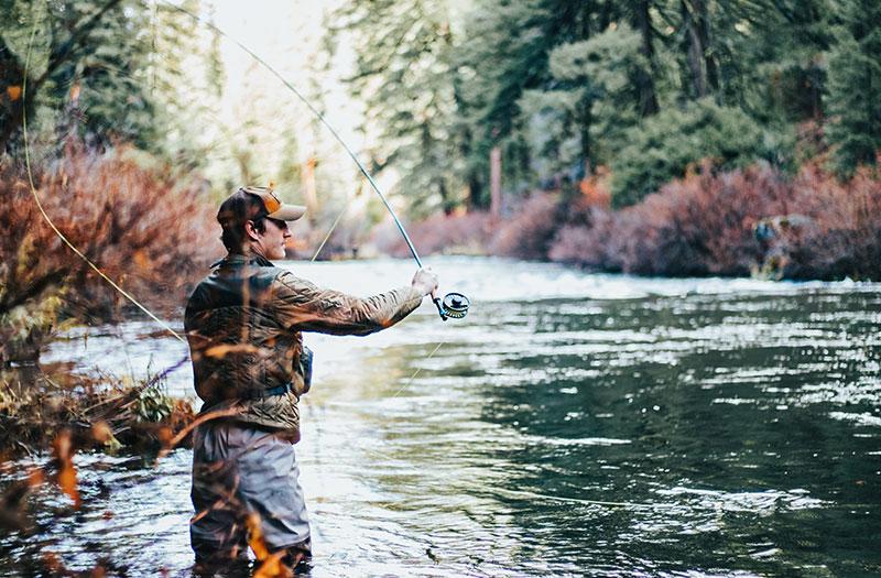Como Interpretar a Vara de Pesca